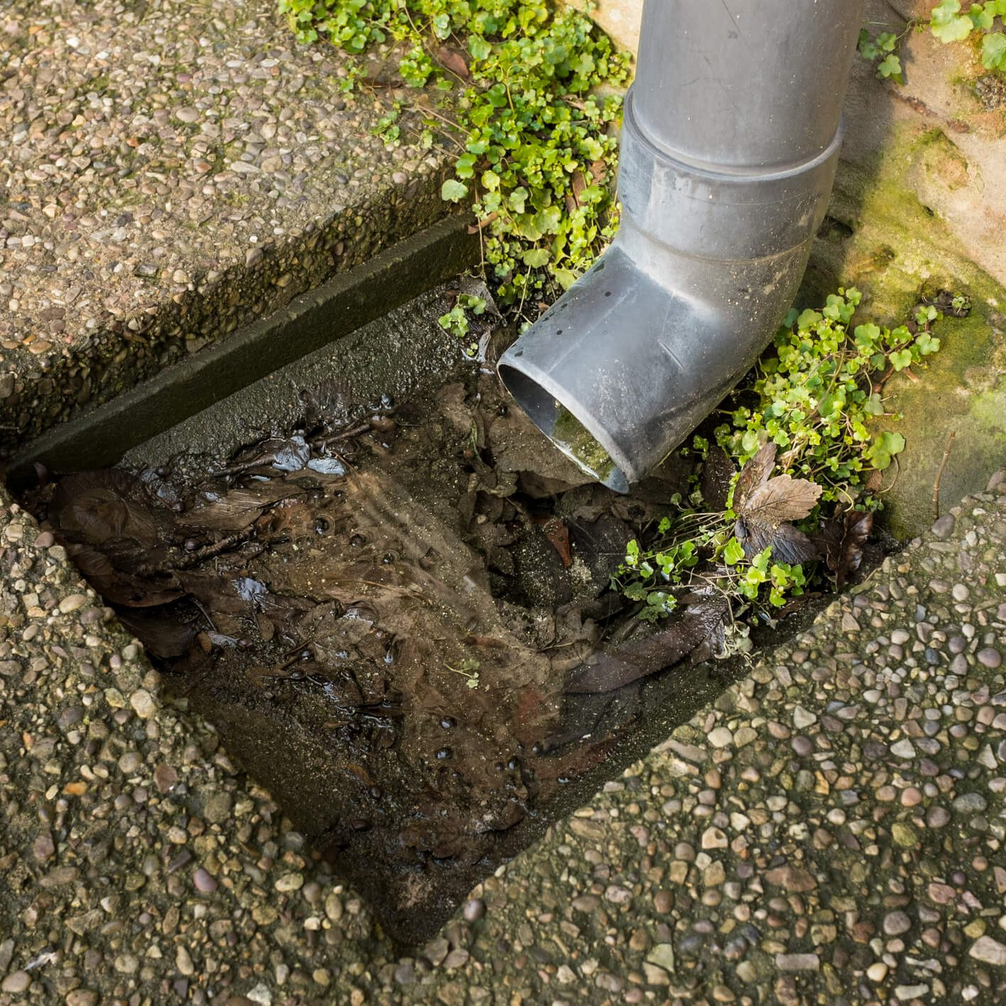 Drain Services Portsmouth